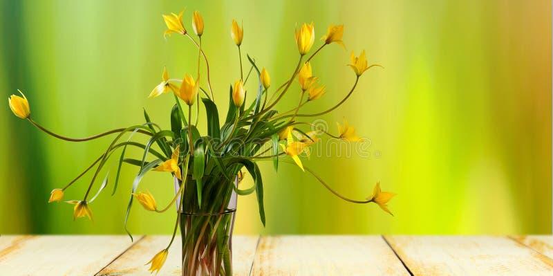 imagen de flores hermosas en un primer del florero imagen de archivo libre de regalías