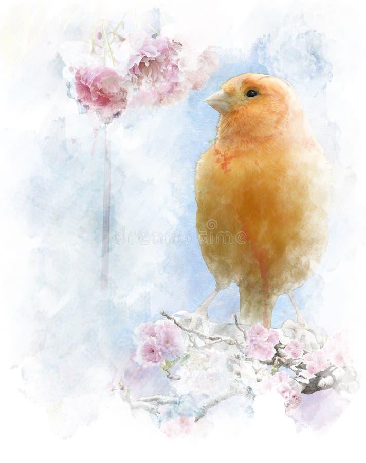 Imagen de la acuarela del pájaro amarillo stock de ilustración