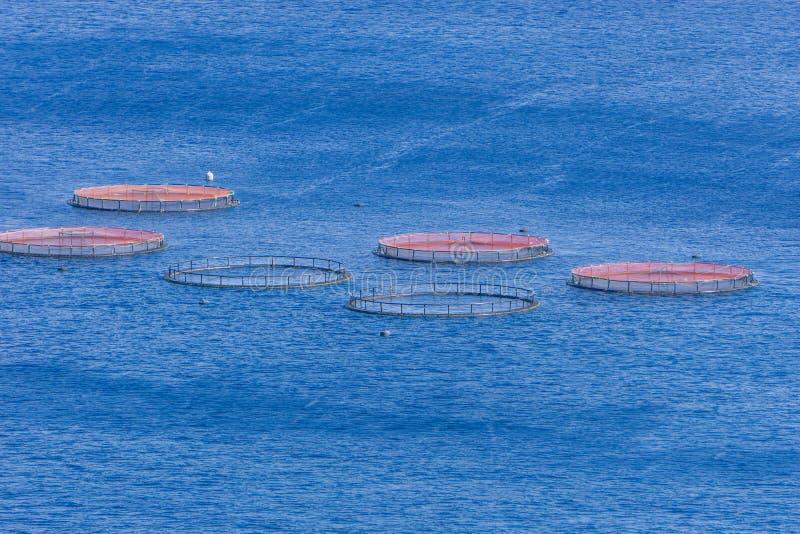 Imagen de la granja de pescados de la acuicultura en el mar atlántico imagen de archivo