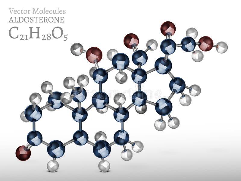 Imagen de la molécula de la aldosterona ilustración del vector