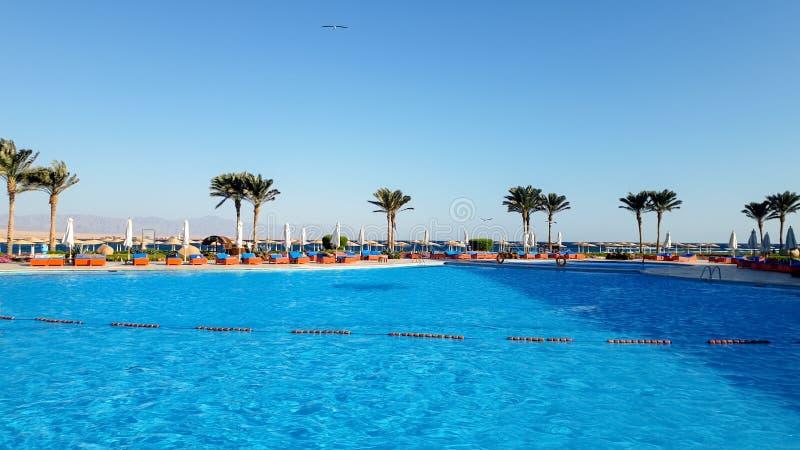 Imagen de la piscina al aire libre hermosa en el complejo playero del hotel del verano contra el cielo azul foto de archivo libre de regalías