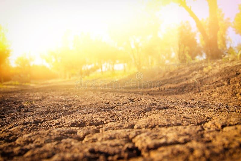 Imagen de la tierra con la tierra seca y agrietada imágenes de archivo libres de regalías