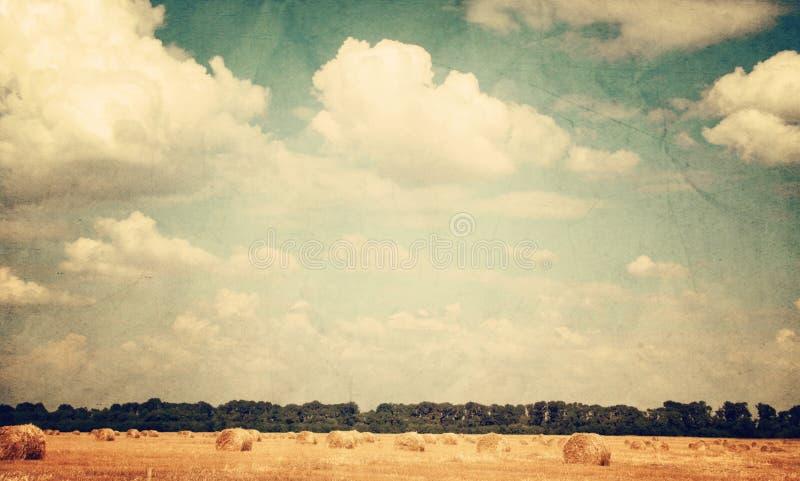 Imagen de la vendimia del paisaje fotografía de archivo