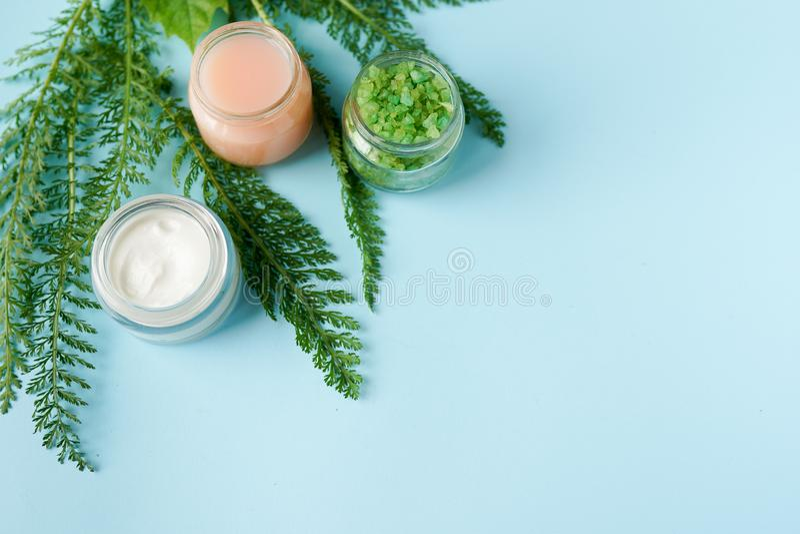Imagen de los ingredientes de los cosméticos en fondo azul con el espacio de la copia tema del skincare Productos org?nicos natur foto de archivo libre de regalías