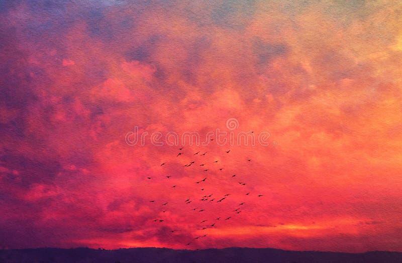 Imagen de nubes y del cielo abstractos con textura pájaros que vuelan y colores de la puesta del sol imagen de archivo libre de regalías