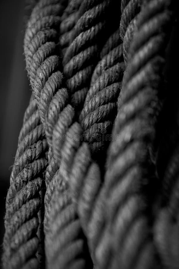 Imagen de nylon de las cuerdas en blanco y negro fotografía de archivo libre de regalías