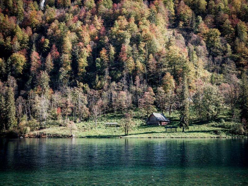 Imagen de poca casa al lado de un lago y la más forrest imagen de archivo