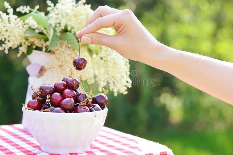 Imagen de un cuenco profundo brillante por completo de cerezas dulces foto de archivo
