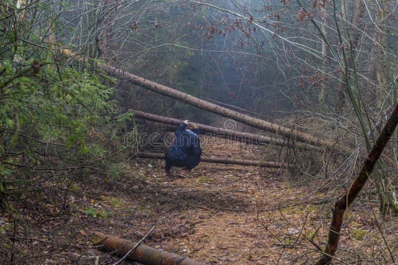 Imagen de una mujer que está mirando cómo pasar entre los troncos de los árboles caidos que bloquean una trayectoria en el bosque imagenes de archivo