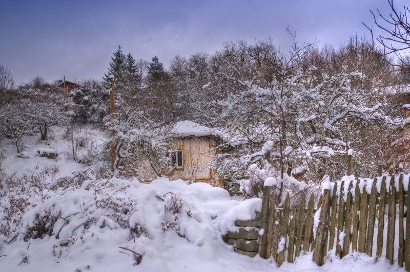 Imagen del invierno - nevando fotografía de archivo
