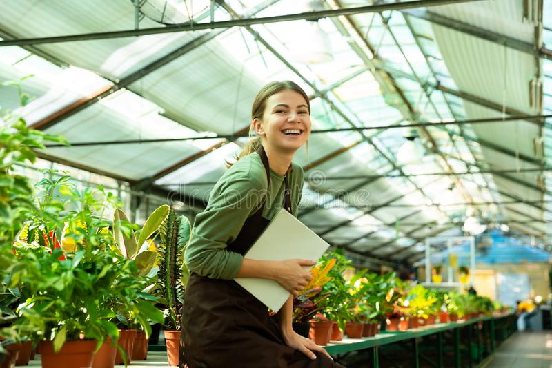 Imagen del jardinero que sonríe en cámara mientras que se coloca cerca de las plantas en invernadero fotos de archivo