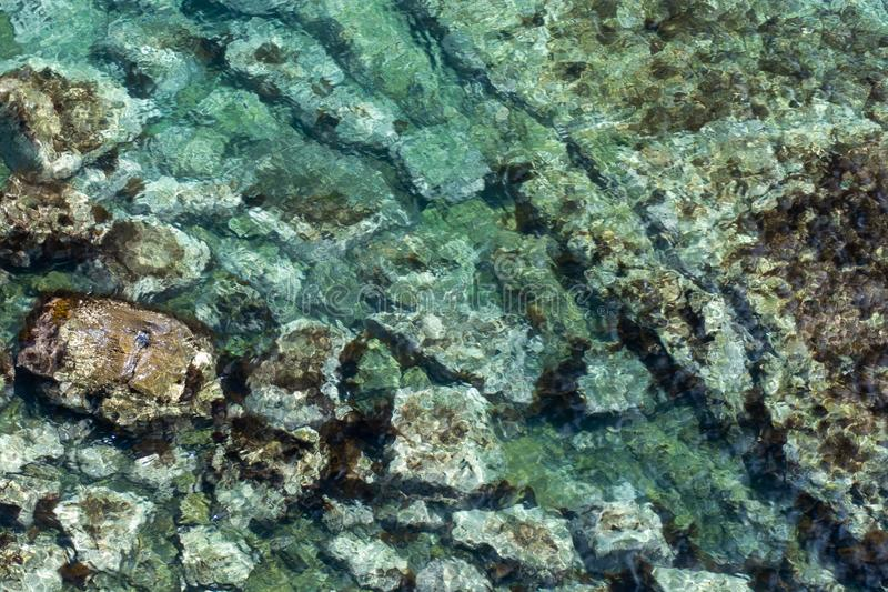 Imagen del mar con agua clara con los rastros inferiores fotografía de archivo