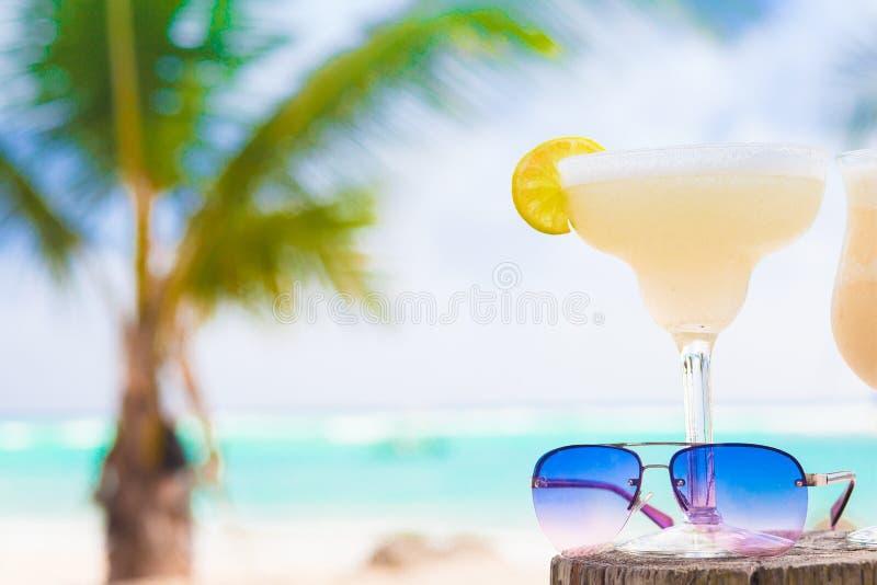 Imagen del margarita y de gafas de sol frescos encendido fotos de archivo