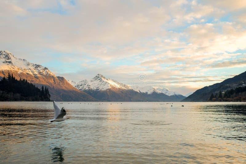Imagen del paisaje de la naturaleza de un vuelo de la gaviota a través del lago con la montaña imagen de archivo