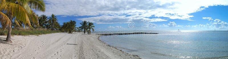 imagen del panorama de la playa y de la palma en frente imágenes de archivo libres de regalías