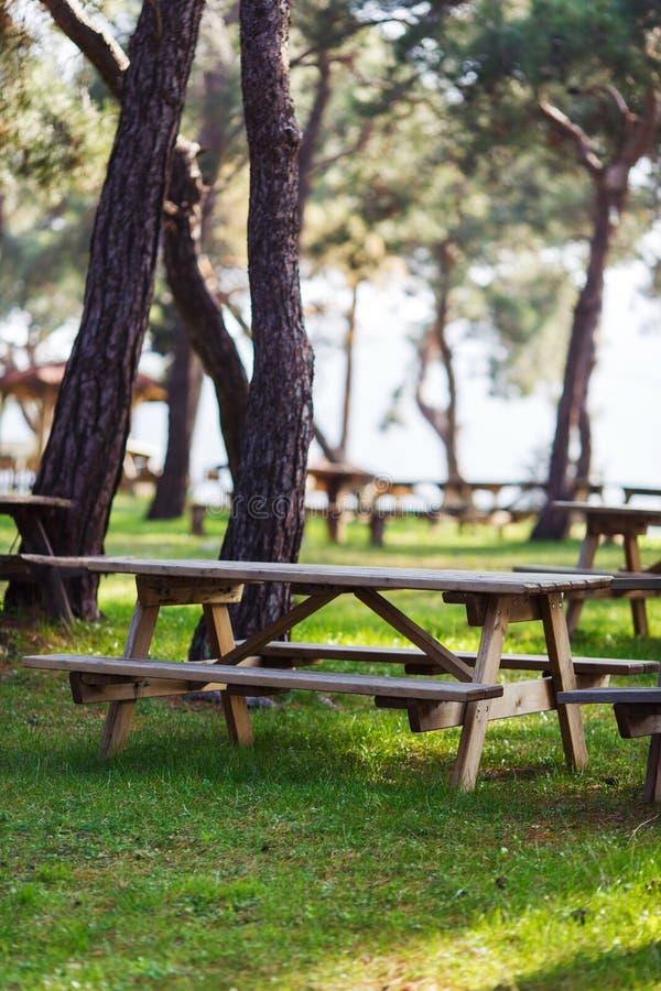Imagen del parque verde con los árboles, bancos de madera, tabla fotos de archivo
