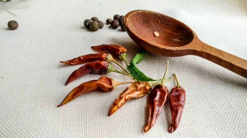 Imagen del pequeño paprika de la pimienta de chile y de la cuchara de madera imagen de archivo libre de regalías
