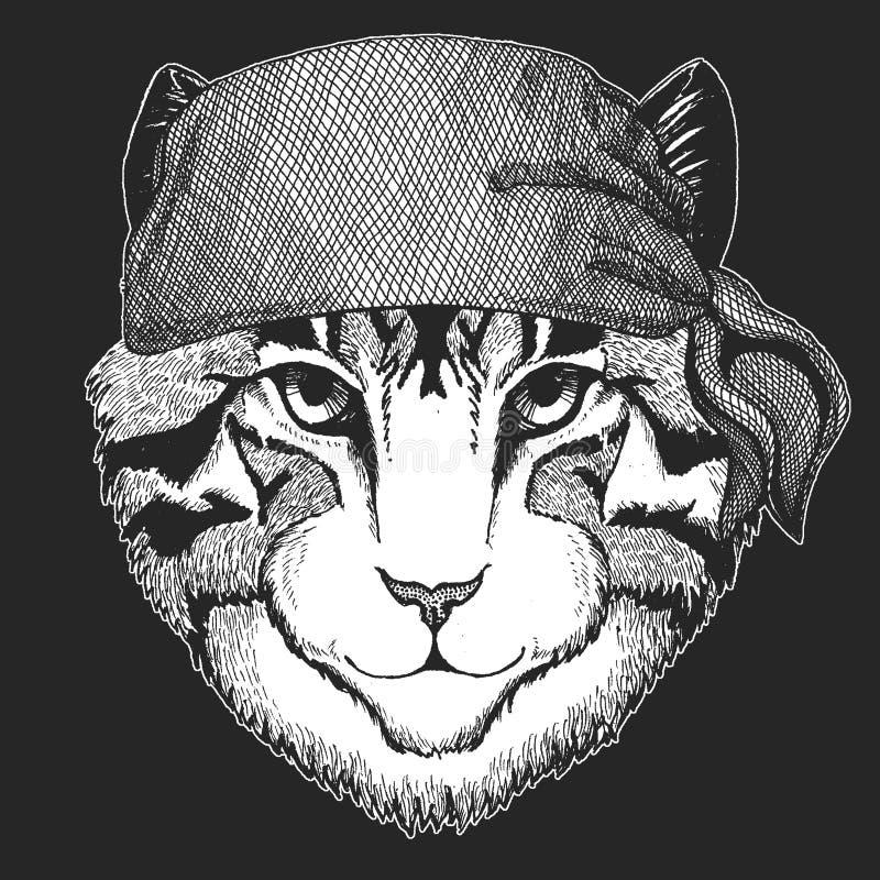 Imagen del pirata fresco del gato nacional, marinero, seawolf, marinero, animal del motorista para el tatuaje, camiseta, emblema, ilustración del vector