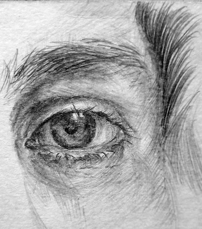 Imagen del primer del ojo humano ilustración del vector
