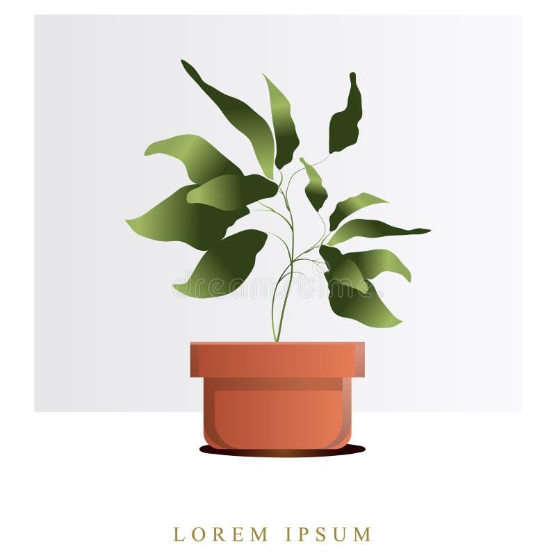 Imagen del vector de flores y de plantas en los potes, ikebana ilustración del vector
