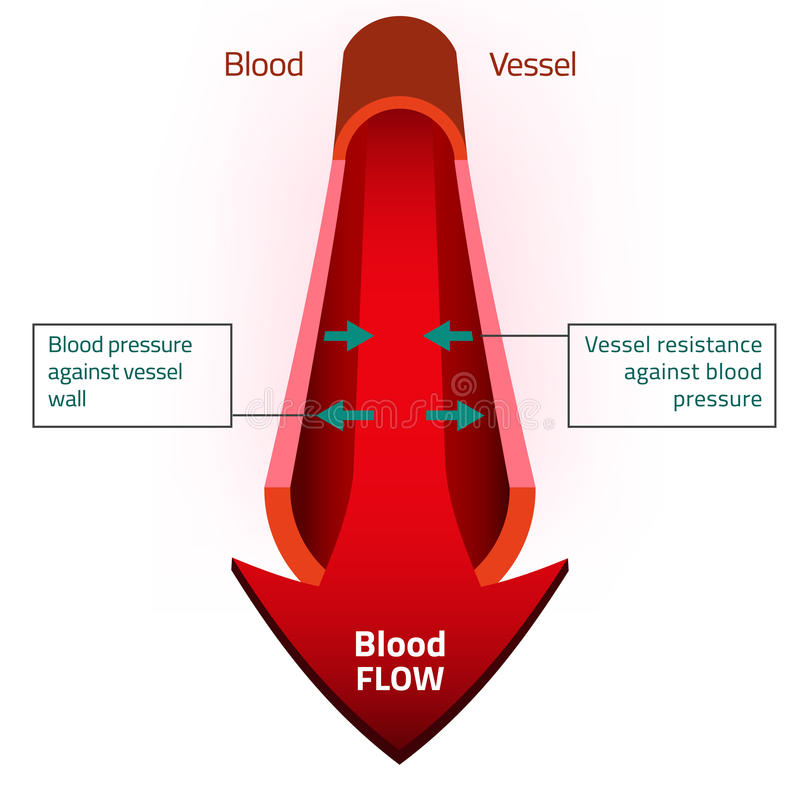 Imagen del vector de la sangre stock de ilustración