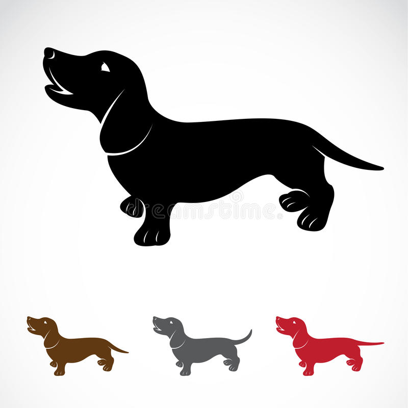 Imagen del vector de un perro (perro basset) stock de ilustración