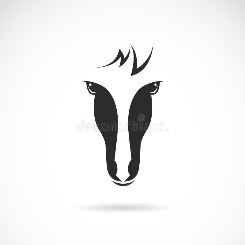 Imagen del vector de una cara del caballo libre illustration