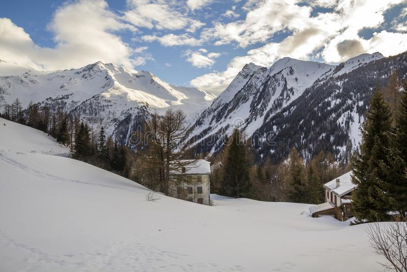 Imagen hermosa del invierno landscape Dos edificios entre spruc verde alto fotografía de archivo
