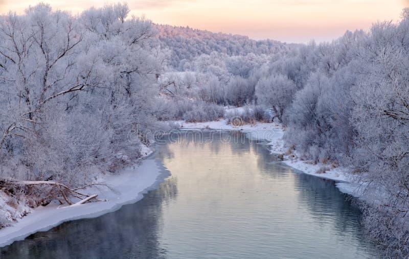 Imagen hermosa del invierno landscape río con los bancos nevados por la mañana en el amanecer fotos de archivo