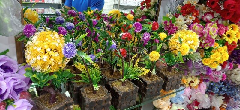 Imagen impresionante de la colección de las flores del mejor de la alameda fotos de archivo libres de regalías