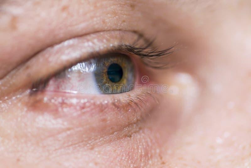 Imagen macra del ojo humano imagen de archivo
