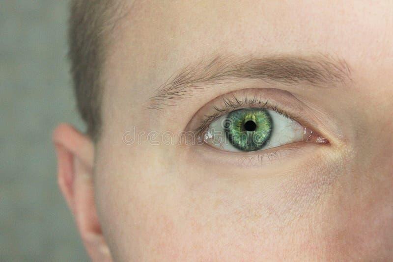 Imagen macra del ojo humano imagen de archivo libre de regalías