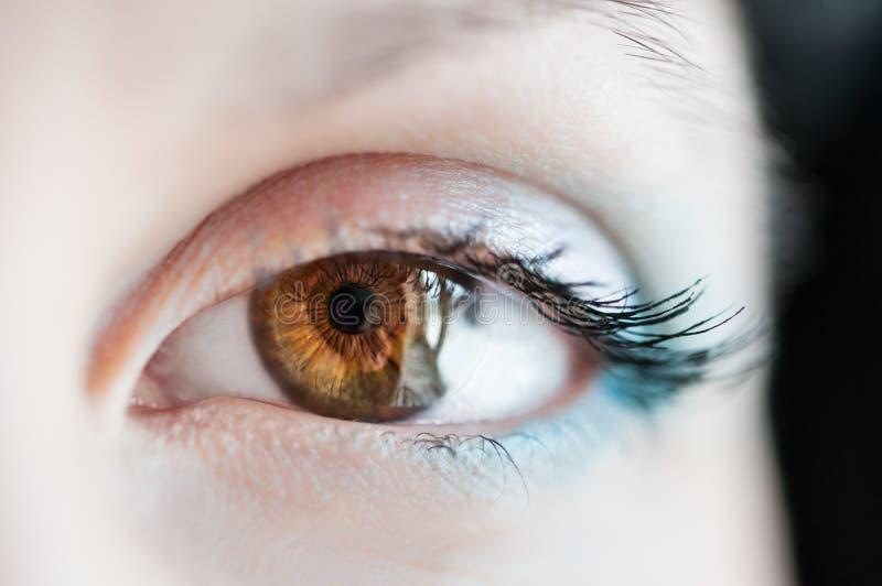 Imagen macra del ojo humano fotos de archivo