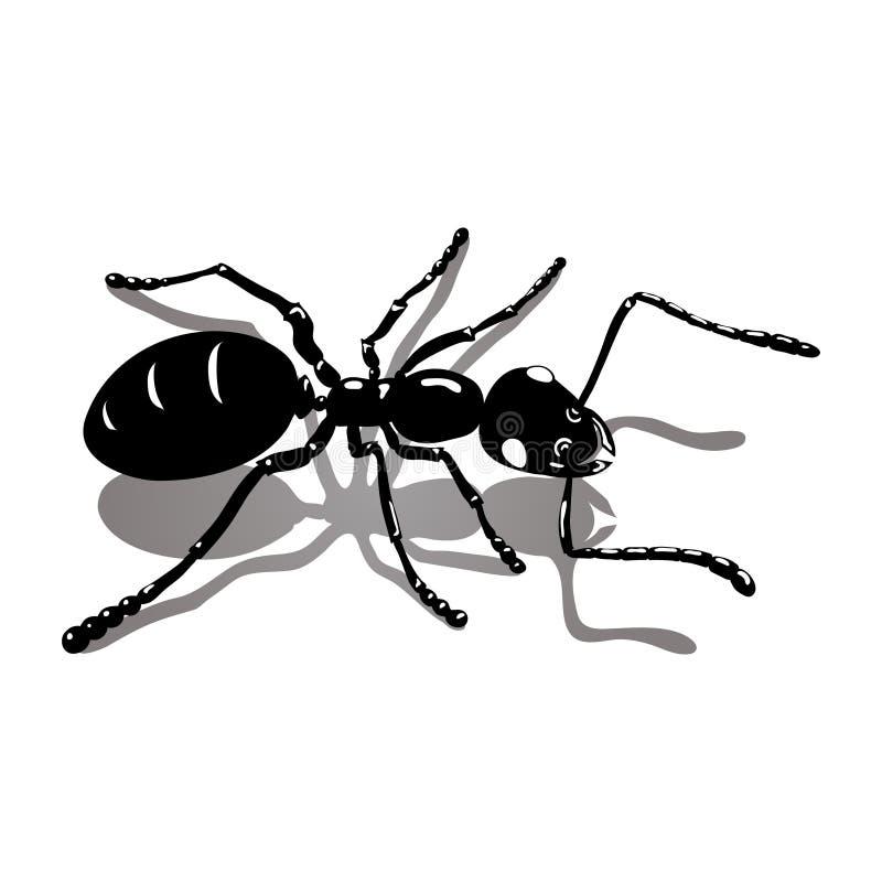 Imagen negra del vector del icono de la hormiga stock de ilustración
