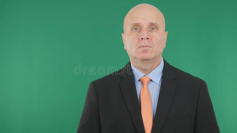 Imagen profesional del encargado acertado Presentation del hombre de negocios fotos de archivo libres de regalías