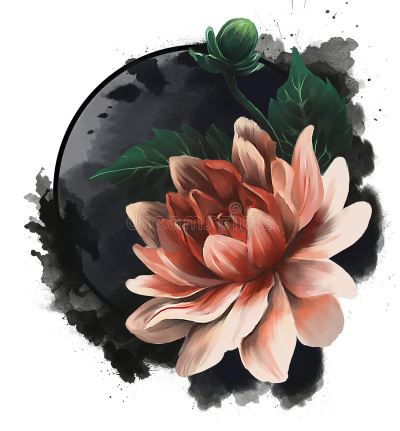 Imagen realista de una flor a mano del loto o de la dalia imagenes de archivo