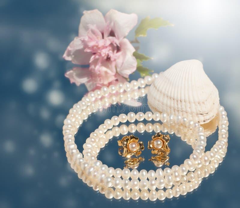Imagen soñadora de los pendientes de oro de la perla con las perlas imagen de archivo