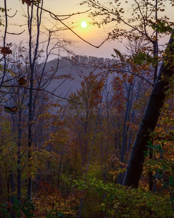 Imagen vertical de un hermoso paisaje de atardecer en otoño en la montaña Medvednica en Zagreb, Croacia. fotos de archivo