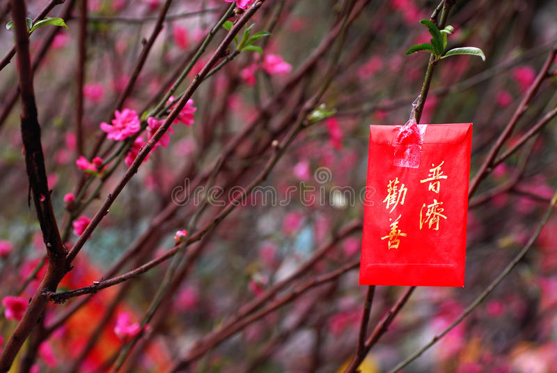 Images chinoises d'an neuf photographie stock libre de droits