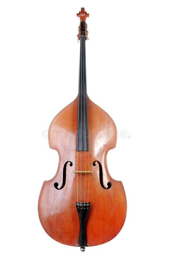Images of the classical contrabass. stock photography