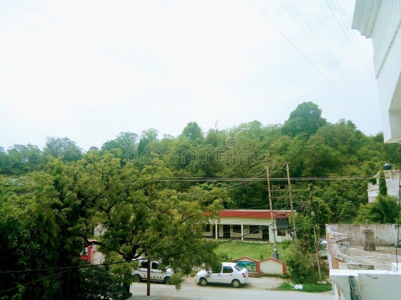 Images de collines et de forêt d'Uttrakhand image stock