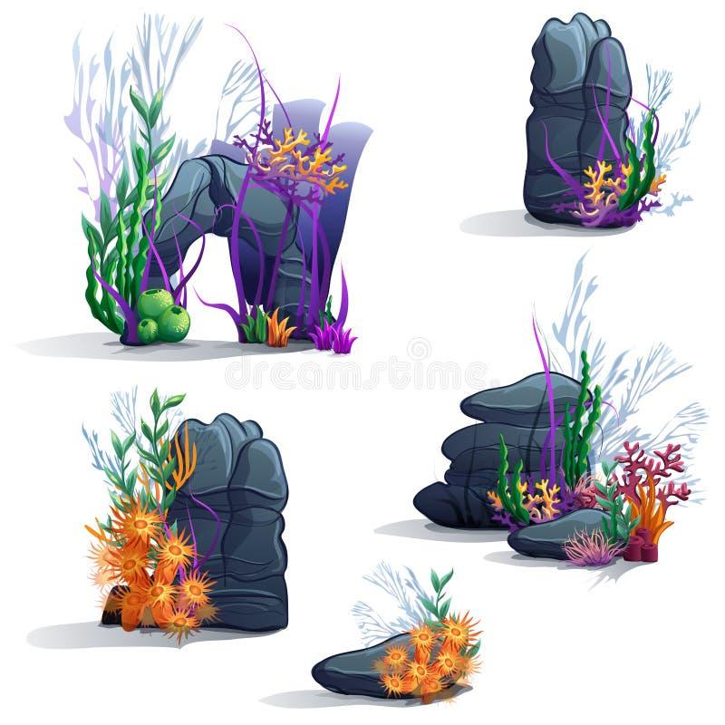 Images des pierres de mer avec des algues illustration stock