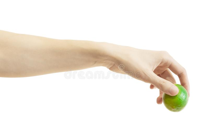 Men`s hand puts down a whole lime isolated on white background. Hand lowers down lime stock photos