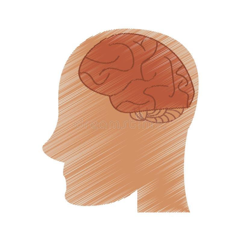 Imaginação da ideia do cérebro da cabeça do perfil do desenho ilustração royalty free