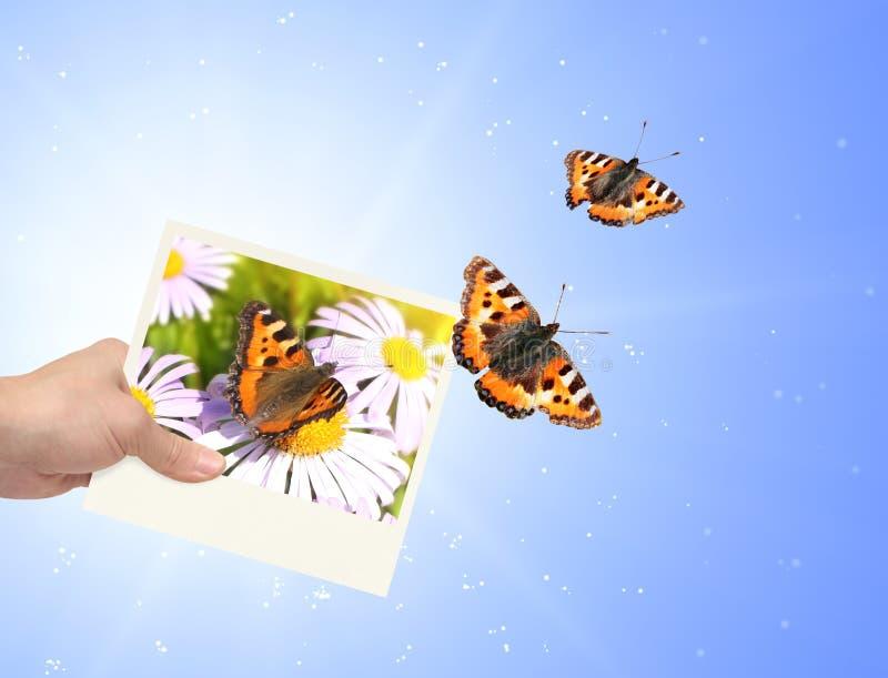 Download Imagination stock illustration. Image of printout, photography - 26535974