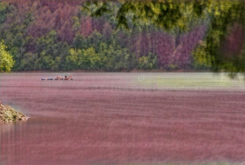 imagination du lac 219_Barcis image stock