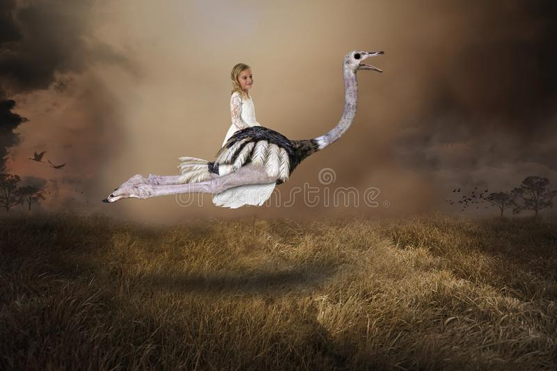Imagination, Girl Flying Ostrich, Nature, Surreal. A young girl uses her imagination to fly on a wildlife ostrich bird. The flying fowl soars to the sky above a