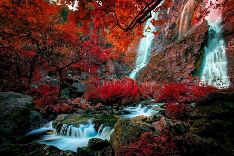 Imaginez coloré du klinimagine coloré de la chute de l'eau de LAN de klong photographie stock