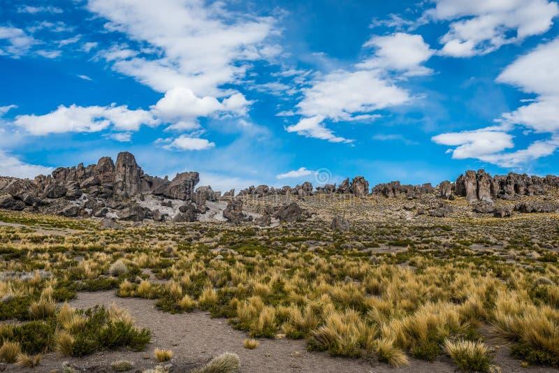 Imata apedreja a floresta no Peru peruano de Andes Arequipa imagens de stock royalty free