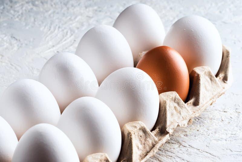 Imballi la chiara dell'uovo ed un differente artificiale nocivo di concetto marrone beige l'altro razzismo fotografia stock libera da diritti